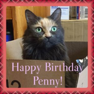 Penny's 9th Birthday Picture